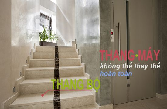 lắp thang máy rồi có cần cầu thang bộ
